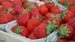 strawberries-823782__340