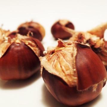 chestnut-498833_960_720