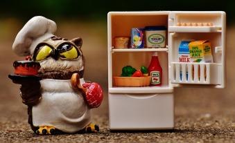 owl-1645310_960_720